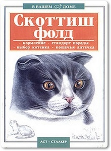 Скоттиш-фолд: Шотландская вислоухая кошка - Савенкова В. А.