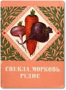 Свекла, морковь, редис - Гринберг Е. и др.