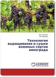 Технология выращивания и сушки изюмных сортов винограда