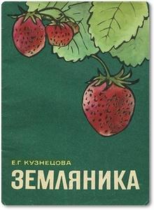 Земляника - Кузнецова Е. Г.