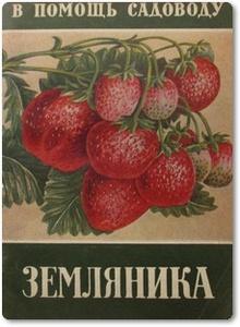 Земляника - Михайлов И.