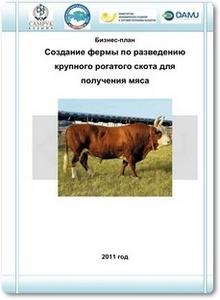 Бизнес-план - Создание фермы по разведению крупного рогатого скота для получения мяса