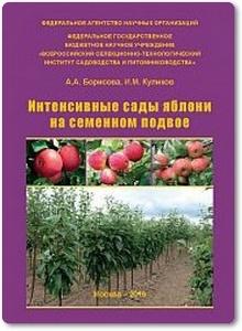 Интенсивные сады яблони на семенном подвое - Борисова А. А. и др.