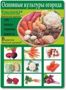 Основные культуры огорода - Панкратова А. Б.