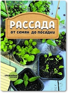 Рассада: от семян до посадки - Добыш Т. Ф.