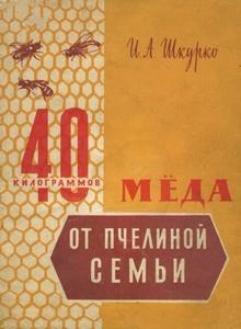 40 килограммов мёда от пчелиной семьи - Шкурко И. А.