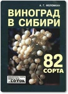 Виноград в Сибири - Фоломкин А. Г.